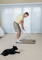 Senior adult man practicing golf grip and swing in bedroom with dog