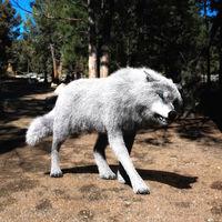Digital 3D Illustration of a Wolf