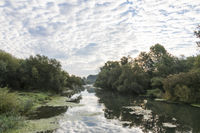 Isar Altwasser_MGL1132.jpg