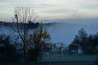 Herbststimmung mit Nebel am Fuße der Schwäbischen Alb