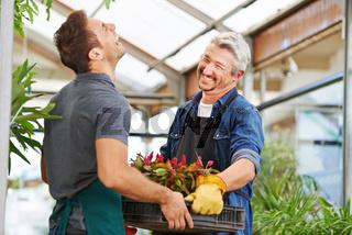 Zwei Männer als Floristen in Gärtnerei