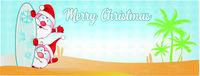 fun santa claus cartoon on surf beach and palm tree