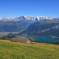 Azure blue Lake Thun, Bernese Oberland. Snow capped mountains Eiger, Monch and Jungfrau, view from Mount Niederhorn. Summer scene in Switzerland.