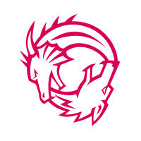 Yin Yang Dragon and Wolf Icon