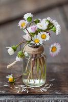 Kleiner Blumenstrauss aus Gaensebluemchen