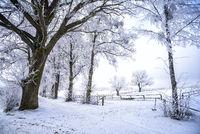 Winterlandschaft in Masuren