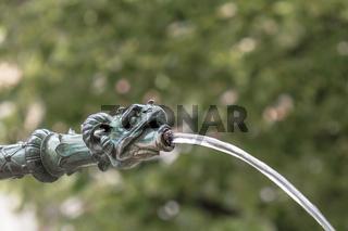 Wasserspeier am Lindavia-Brunnen, Lindau Bodensee