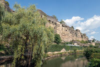 Weeping willow along Alzette river in Luxembourg city downtown Grund