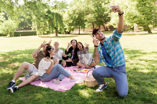 friends taking selfie by smartphone at picnic
