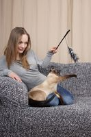 young woman playing with cat