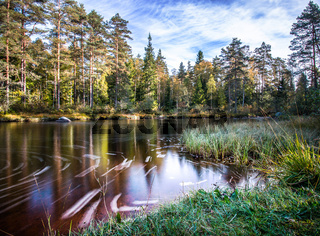 Idyllische Landschaft mit Fluss und Wald