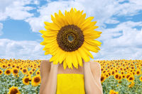 Beautiful young woman with sunflower in her hands in front of field