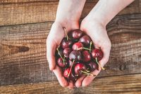 Hands holding cherries