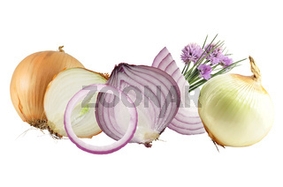 onions isolated on white