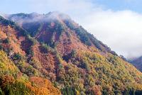Tadami Fukushima Autumn