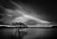 Storm over Salamander Bay