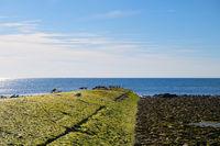 Ile de Ré - Landing stage at the north coast