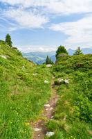 Pfad als Wanderweg in den französischen Alpen