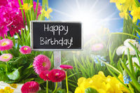 Sunny Spring Flower Meadow, Happy Birthday