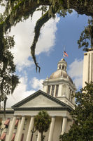 Moss Grows on Trees Framing the Capital Building in Tallahasse Florida