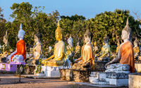 A colorful group of Buddha statues at the Buddhist Cemetery. Sunset at the Buddhist temple  Wat Phai Rong Wua,Thailand.