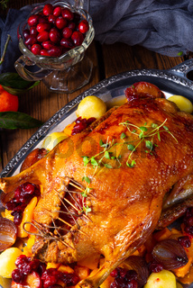 roast duck with potato dumplings and plums