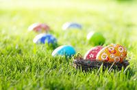 Easter eggs in the nest on green spring grass