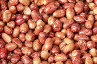 Jujube Fruits