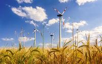 Windenergie und Landwirtschaft