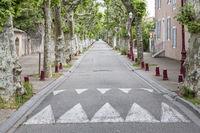 Platanenallee in der Ortschaft Viviers, Ardeche, Frankreich