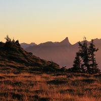 Sunset scene on Mount Niederhorn. Trees and silhouette of Mount Stockhorn.