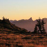 Sunset scene on Mount Niederhorn. Trees and silhouette of Mount Stockhorn.