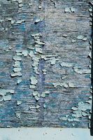 Textured background cracked blue paint on a wooden surface