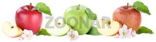 Apfel Äpfel Sammlung Blüte Frucht geschnitten Freisteller freigestellt isoliert