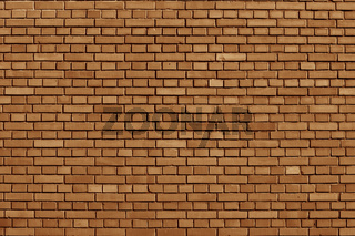 Meerkat colored brick wall background