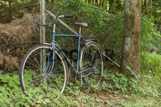 altes Fahrrad abgesperrt an einem Zaun im Wald