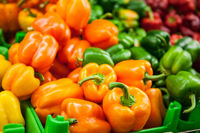 Fresh Yellow, orange, greeen and red peppers at the market