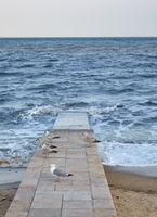 Seagulls on Beach Pier. Lyme Regis. England