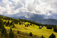 Alm mit Dolomiten in Südtirol, Italien, alm with Dolomites, South Tyrol, Italy