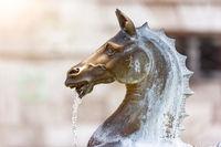 fountain in Ascoli Piceno