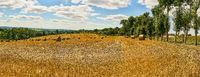 Landschaft Panorama mit Feld nach Ernte im Sommer