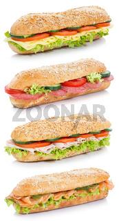 Sammlung Baguette Brötchen Schinken Salami Käse Lachs Fisch Hochformat Sandwich frisch freigestellt Freisteller