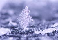 Closeup of an ice crystal