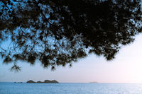 Croatian coast in Dubrovnik in summer