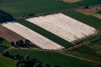 Spagelfelder
