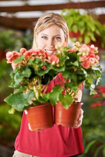 Frau im Blumenladen mit Eliator-Begonien