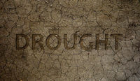 Drought cracked dirt