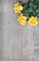 Luxury yellow roses on a background of light wood