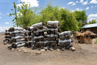 Charcoal for Sale, street of ethiopia