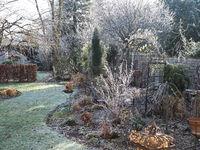 Garten Raureif